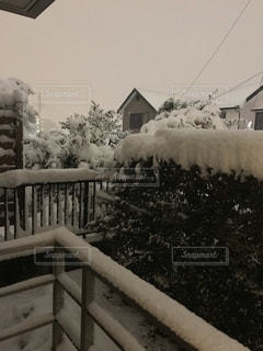 都会大雪の写真・画像素材[1905825]