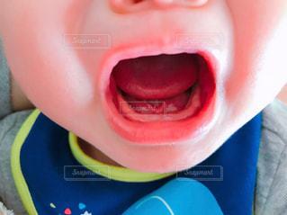 歯が生え始めてますよ!の写真・画像素材[1907844]