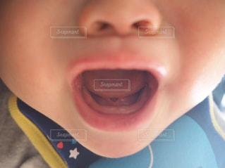 歯が生え始めてます。下の歯。の写真・画像素材[1907846]