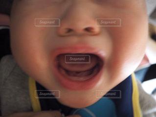 歯が生え始めてます!の写真・画像素材[1907850]