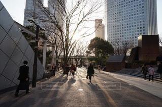夕方のオフィス街の写真・画像素材[85495]