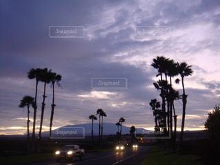 ハワイドライブの写真・画像素材[2031294]
