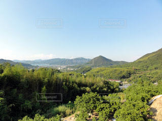 近くに緑豊かな緑の丘陵のアップの写真・画像素材[976831]