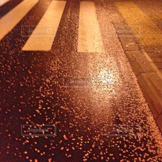桜散る夜道の写真・画像素材[1901314]