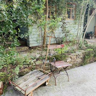 庭の木製ベンチの写真・画像素材[1901745]
