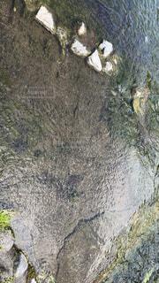 河川プールの水っす!の写真・画像素材[2056899]
