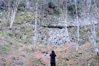 森の隣に立っている人の写真・画像素材[2953820]