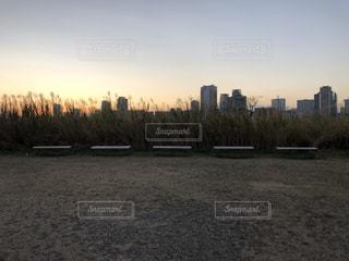 都市を背景にした水域の写真・画像素材[2953836]
