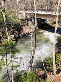 川に架かる橋の写真・画像素材[2137122]