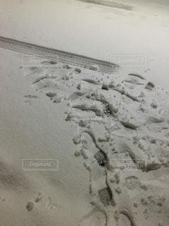 積雪のあとの写真・画像素材[1980901]