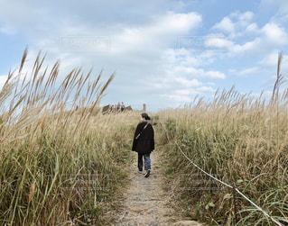 芝生に覆われた畑の上に立っている男の写真・画像素材[2827181]