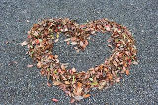 落ち葉で作ったハートの写真・画像素材[2363757]