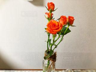 お花の写真・画像素材[1913950]