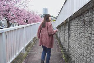 お散歩の写真・画像素材[2038187]