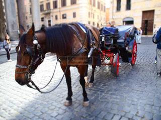 ヨーロッパの馬車の写真・画像素材[1929439]