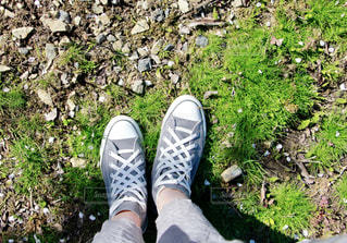 靴ひも注目!の写真・画像素材[2033534]