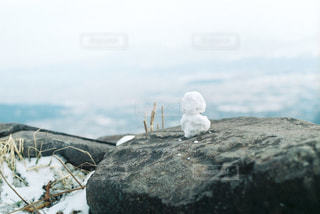 阿蘇の雪だるまの写真・画像素材[968516]