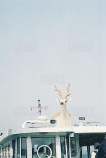 愛媛の北条鹿島への船の写真・画像素材[968518]