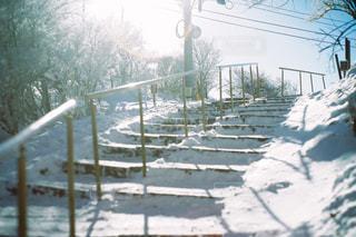 雪に覆われた建物の写真・画像素材[997965]
