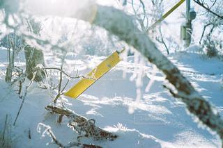 空気で雪のボードに乗る人の写真・画像素材[997966]