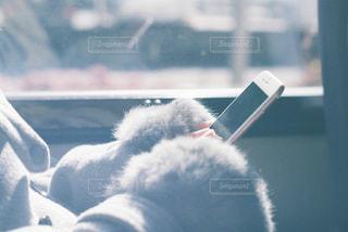 スマホを触る手の写真・画像素材[1620287]