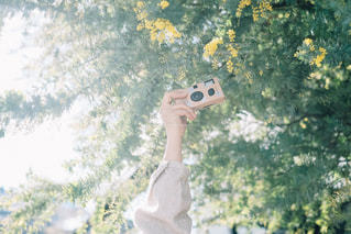 花の写真・画像素材[1835585]