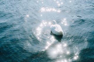 湖の写真・画像素材[3218224]
