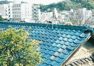 屋根の上の猫の写真・画像素材[3218288]