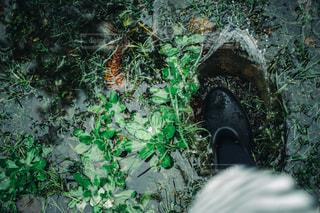 水溜りの写真・画像素材[3218303]