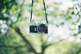 フィルムカメラの写真・画像素材[3218985]
