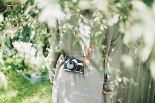 カメラ女子の写真・画像素材[3218986]