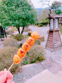 食べ物の写真・画像素材[1988354]