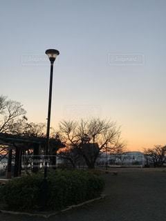 湘南平の公園の写真・画像素材[2871404]
