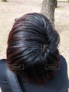男性の頭皮の写真・画像素材[2026166]
