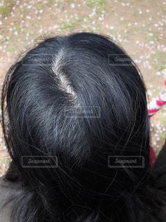 女性の頭皮の写真・画像素材[2027303]