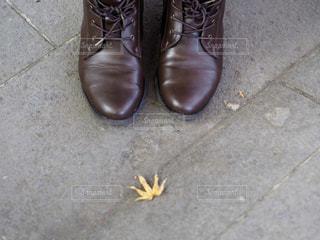 足元の秋の写真・画像素材[1961767]