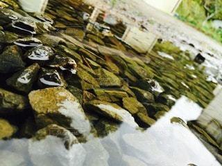 岩の写真・画像素材[14788]