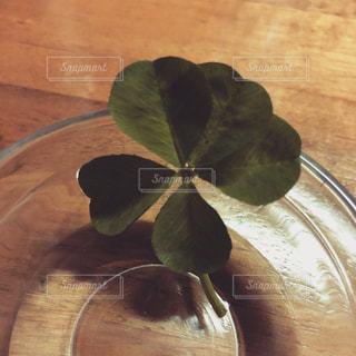 木製のテーブルの上に座ってコーヒー カップの写真・画像素材[1935634]