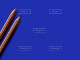 2本の鉛筆の写真・画像素材[2292005]