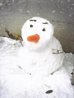 冬の写真・画像素材[2024007]