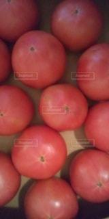 トマト 新鮮野菜の写真・画像素材[3573331]