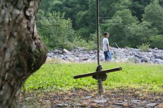 森の中にある手作りブランコの写真・画像素材[2272495]
