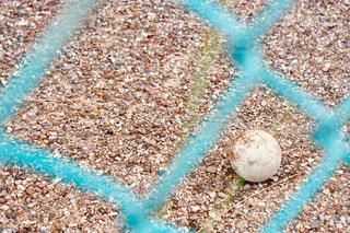 フェンス越しのボールの写真・画像素材[2290254]