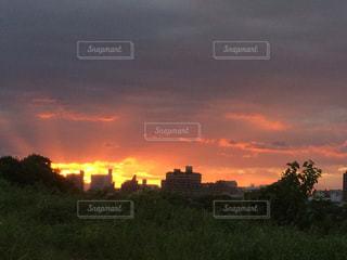 都市の夕日の写真・画像素材[2420628]