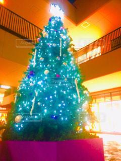 クリスマスツリーの写真・画像素材[2693700]