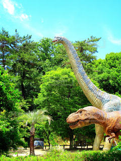 青空と恐竜の写真・画像素材[2214866]