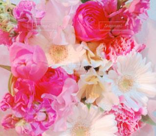 花束の写真・画像素材[1963324]