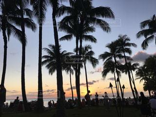Hawaii sunset  beachの写真・画像素材[1953580]