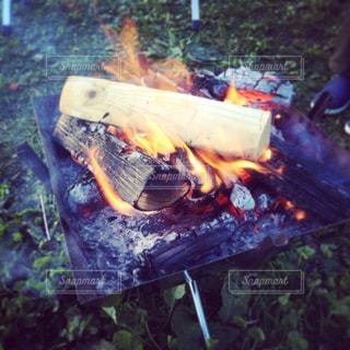 炎の写真・画像素材[238347]