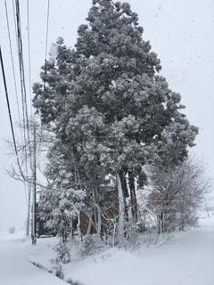 雪が綺麗な街☃️❄️の写真・画像素材[1957440]